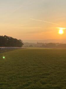 Sunrise on the Gallops